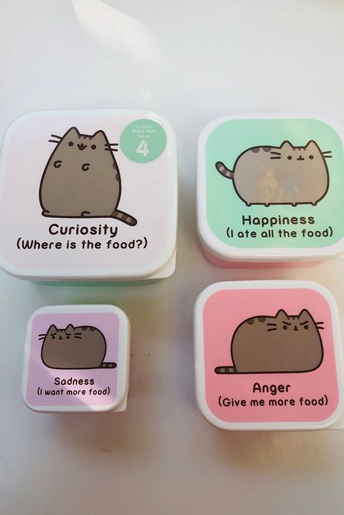 Set Of 4 Pusheen Snack Boxes